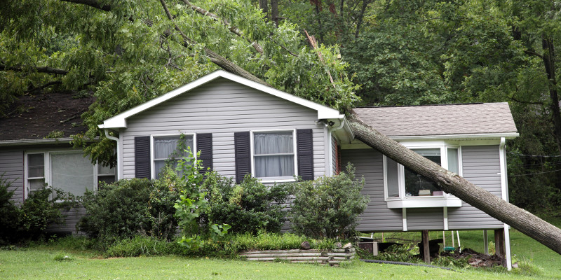 What to Do if You Have Roof Storm Damage